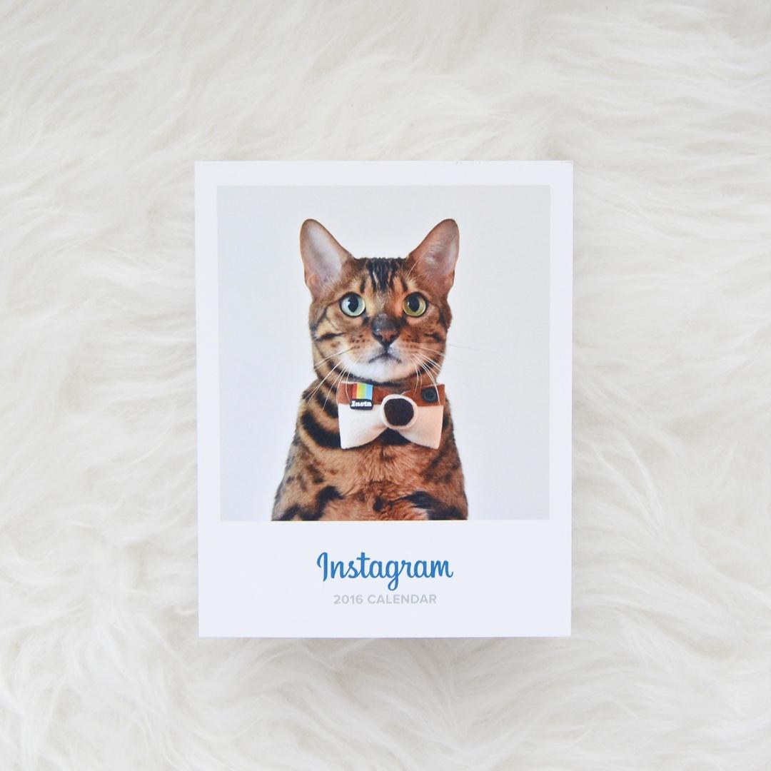 Calendario Instagram 2016 Gema Espinosa Rubirroja 3