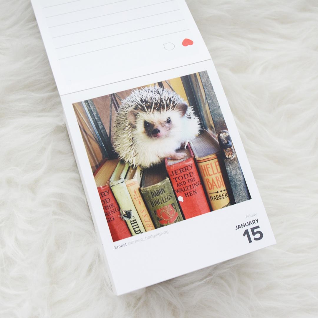 Calendario Instagram 2016 Gema Espinosa Rubirroja 8