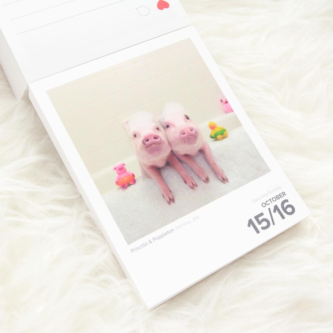 Calendario Instagram Gema Espinosa Rubirroja 13